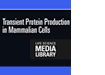 Transient Protein Production in Mammalian Cells DVD
